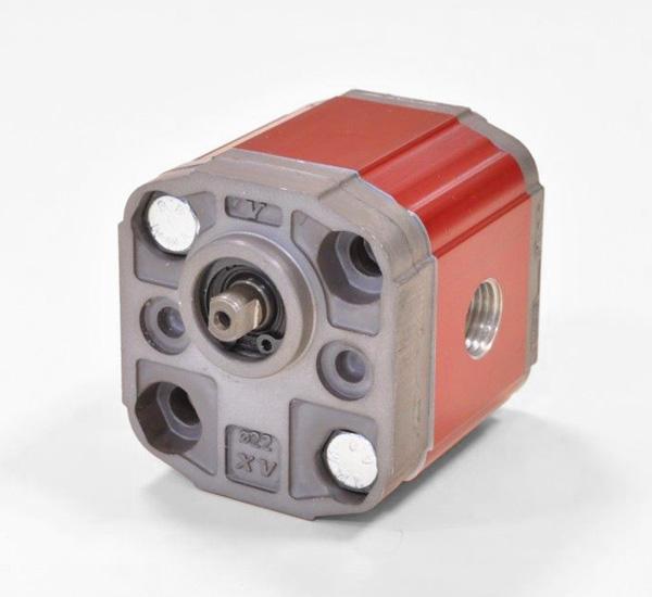 Motor de Engranajes XU | XU012 - MOTOR 'BH' TIPO - BRIDA ø22 - CAÑA MOLIDA